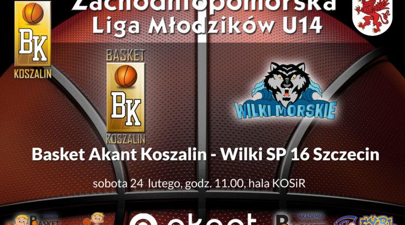 basket_wilki16_00